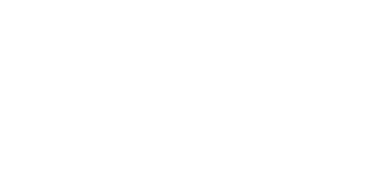 rapiergroup logo